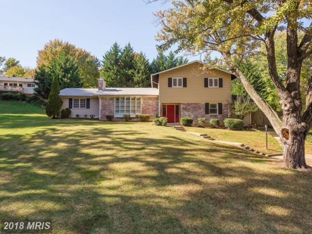 3704 Sprucedale Drive, Annandale, VA 22003 (#FX10090948) :: Pearson Smith Realty
