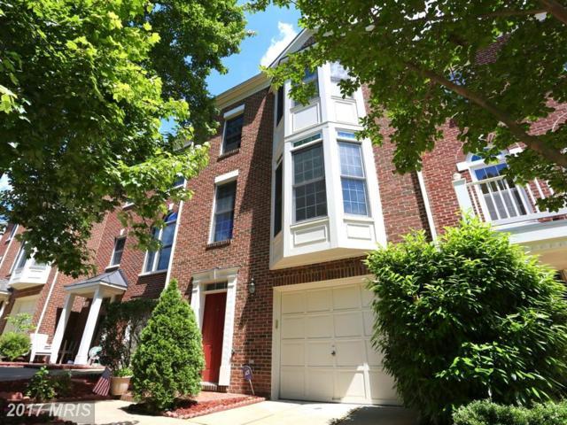 4041 Werthers Court, Fairfax, VA 22030 (#FX10095522) :: Growing Home Real Estate
