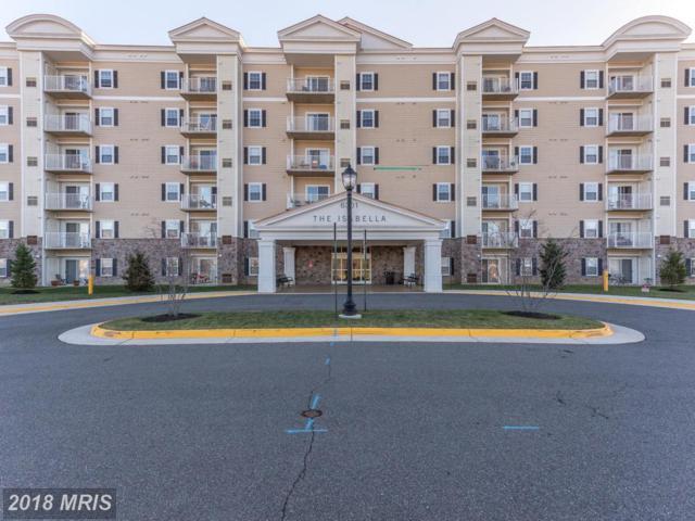 6301 Edsall Road #211, Alexandria, VA 22312 (#FX10097878) :: Pearson Smith Realty