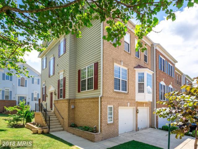 6241 Auburn Leaf Lane, Alexandria, VA 22312 (#FX10098342) :: Pearson Smith Realty
