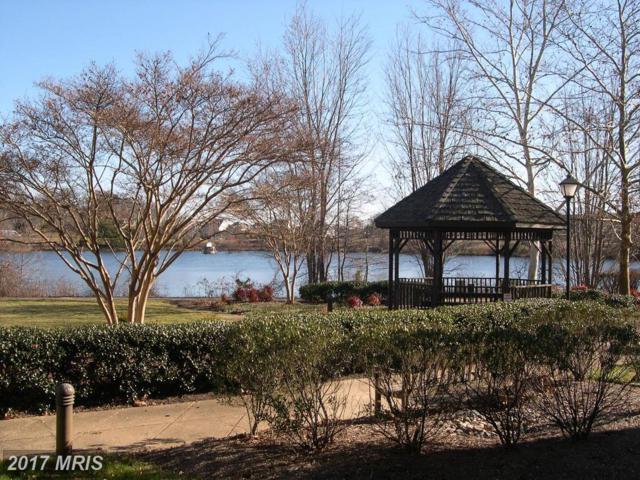 6561 Grange Lane #103, Alexandria, VA 22315 (#FX10104627) :: Pearson Smith Realty