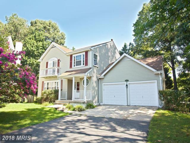 5223 Woodleaf Court, Centreville, VA 20120 (#FX10105873) :: Pearson Smith Realty