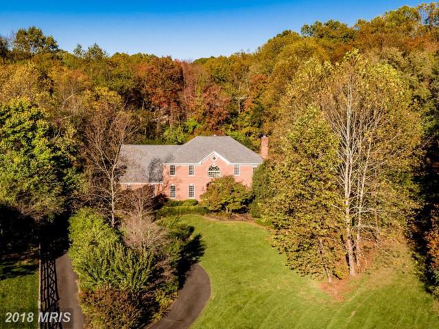 11302 Waples Mill Road, Oakton, VA 22124 (#FX10106496) :: Green Tree Realty