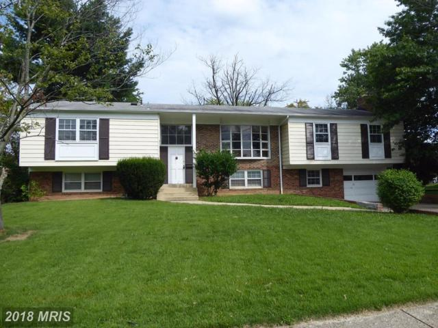 6129 Rivanna Drive, Springfield, VA 22150 (#FX10112141) :: The Withrow Group at Long & Foster