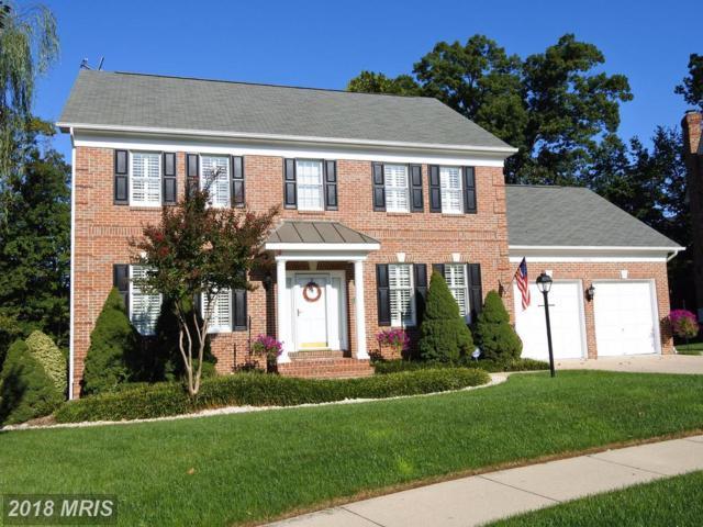 6212 Woodland Lake Drive, Alexandria, VA 22310 (#FX10119336) :: Pearson Smith Realty
