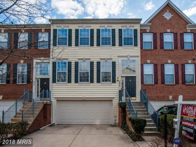 6659 Scottswood Street, Alexandria, VA 22315 (#FX10120320) :: Tom & Cindy and Associates