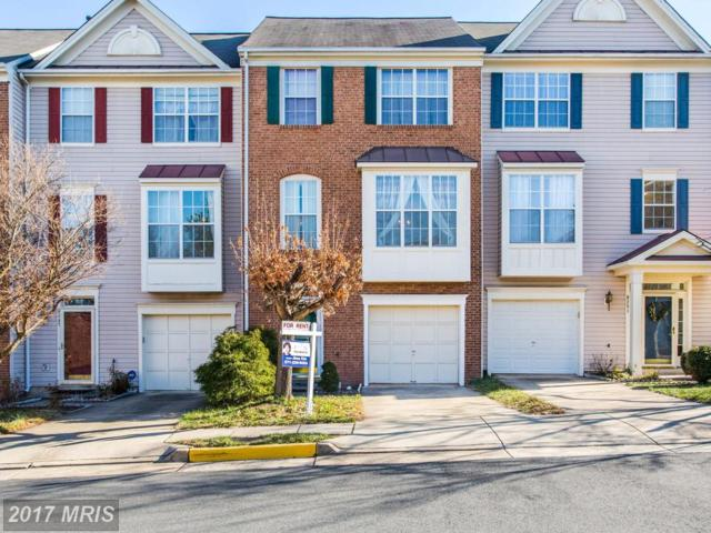 6249 Clay Pipe Court, Centreville, VA 20121 (#FX10123876) :: Pearson Smith Realty