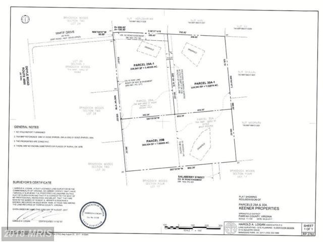 29-B White Drive, Clifton, VA 20124 (#FX10126565) :: Browning Homes Group