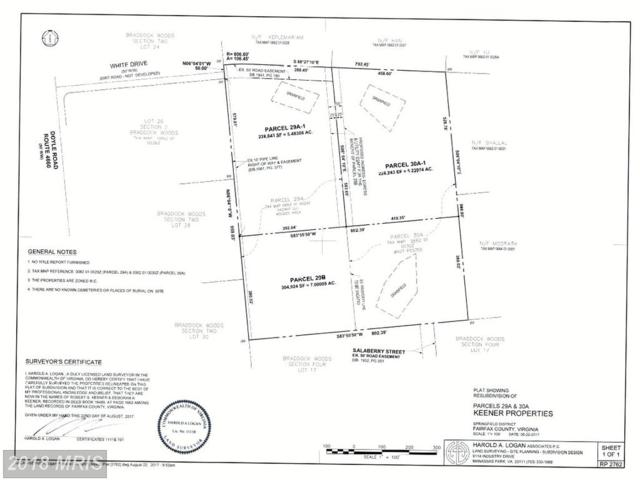 29-A-1 White Drive, Clifton, VA 20124 (#FX10126566) :: Browning Homes Group