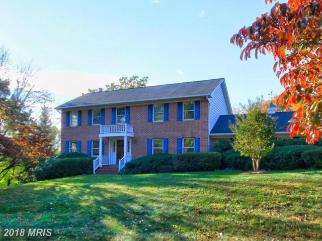 10913 Belgravia Court, Great Falls, VA 22066 (#FX10129704) :: Long & Foster