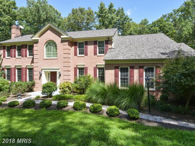 11110 Hampton Road, Fairfax Station, VA 22039 (#FX10130313) :: Browning Homes Group