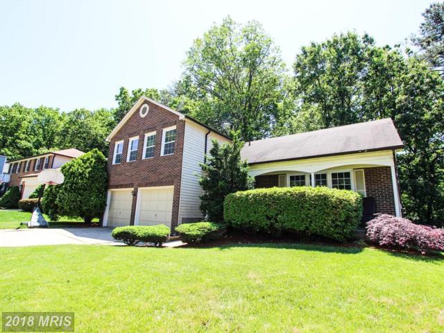 6542 Raftelis Road, Burke, VA 22015 (#FX10135734) :: Advance Realty Bel Air, Inc