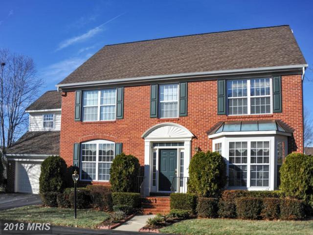 6366 Alderman Drive, Alexandria, VA 22315 (#FX10137059) :: Browning Homes Group