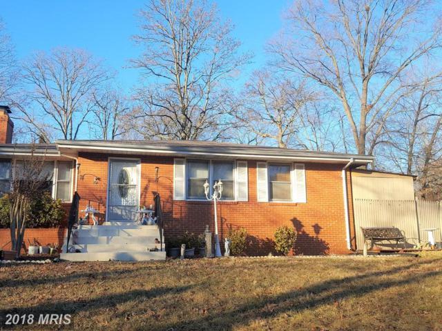 7209 Calamo Street, Springfield, VA 22150 (#FX10142937) :: Colgan Real Estate