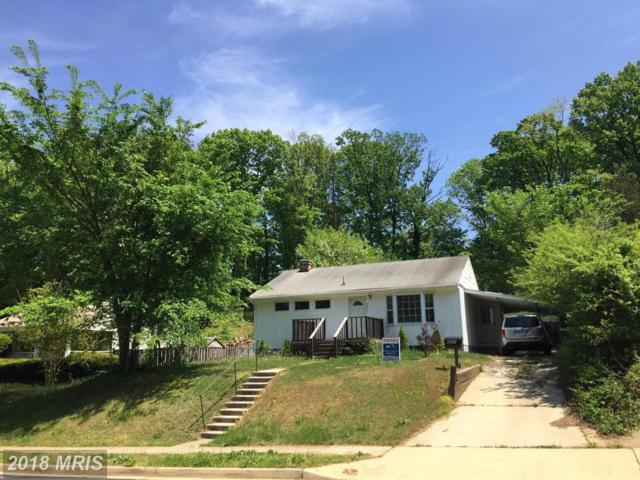 6607 Berkshire Drive, Alexandria, VA 22310 (#FX10146604) :: Jim Bass Group of Real Estate Teams, LLC
