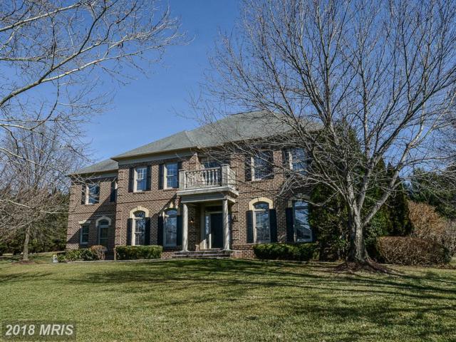 662 Nalls Farm Way, Great Falls, VA 22066 (#FX10158679) :: Provident Real Estate