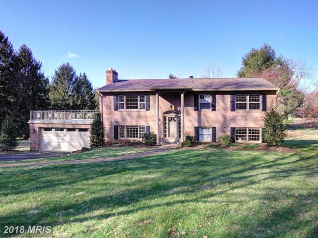 328 River Bend Road, Great Falls, VA 22066 (#FX10179316) :: CR of Maryland