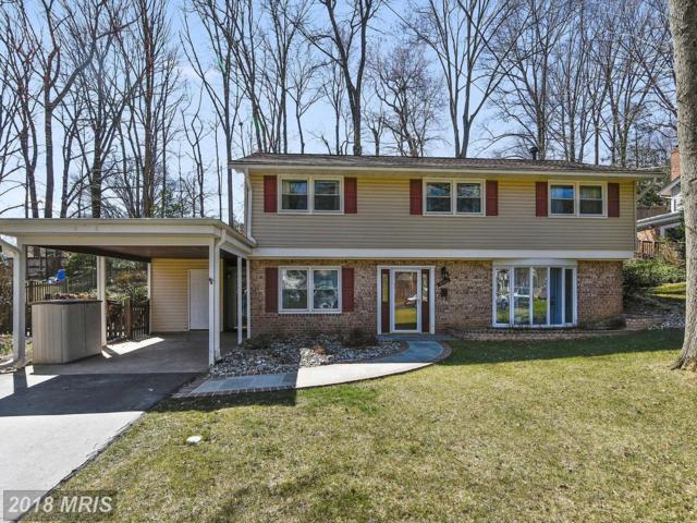 4140 Lenox Drive, Fairfax, VA 22032 (#FX10185277) :: Pearson Smith Realty
