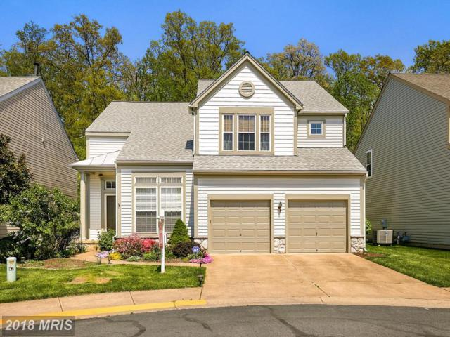 12343 Brown Fox Way, Reston, VA 20191 (#FX10190521) :: Circadian Realty Group