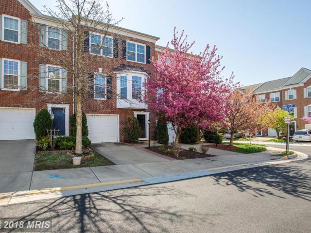 8868 Cherokee Rose Way, Lorton, VA 22079 (#FX10198314) :: Green Tree Realty