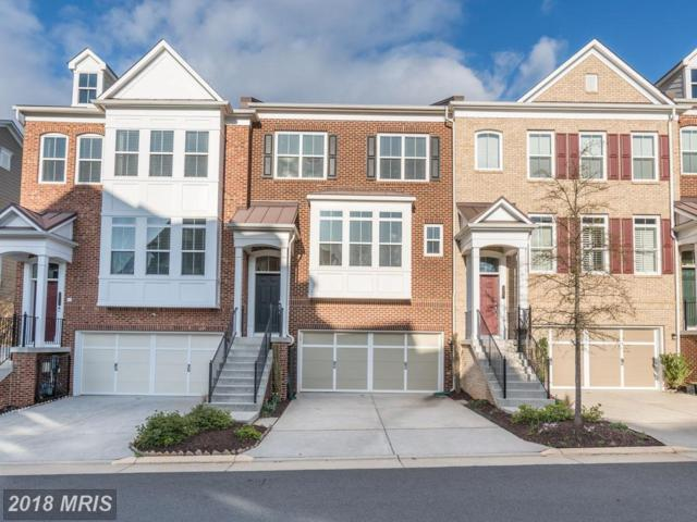 2955 Chesham Street, Fairfax, VA 22031 (#FX10204670) :: Dart Homes