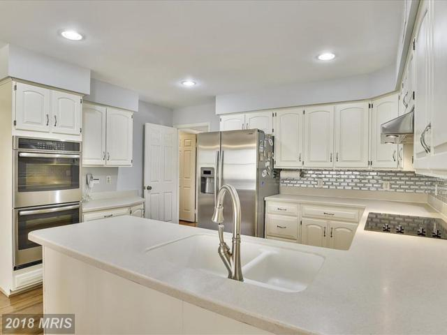 1080 Harriman Street, Great Falls, VA 22066 (#FX10207288) :: Great Falls Great Homes
