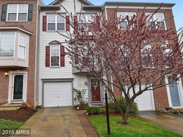 6375 Levtov Landing, Alexandria, VA 22312 (#FX10212975) :: The Greg Wells Team
