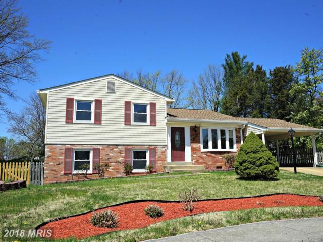 4200 Carmel Terrace, Chantilly, VA 20151 (#FX10213453) :: Keller Williams Pat Hiban Real Estate Group