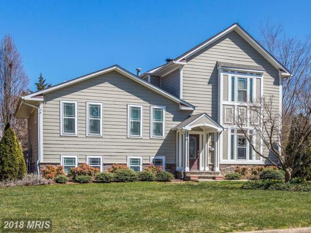 1111 Carper Street, Mclean, VA 22101 (#FX10213761) :: The Maryland Group of Long & Foster