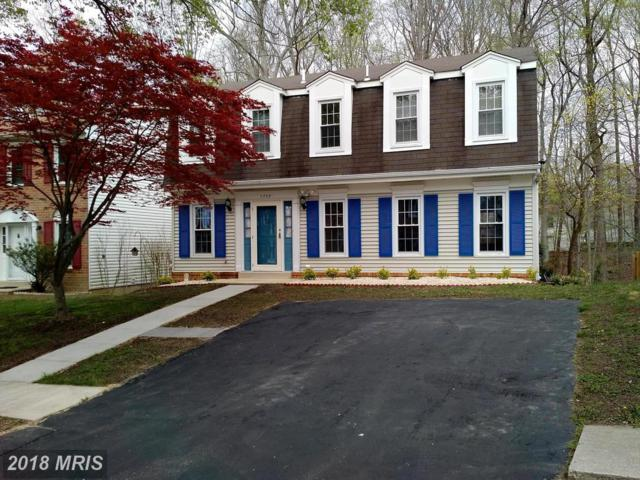 7709 Newington Forest Avenue, Springfield, VA 22153 (#FX10218886) :: Pearson Smith Realty