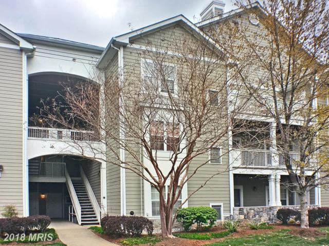 1701 Lake Shore Crest Drive #11, Reston, VA 20190 (#FX10219098) :: Dart Homes