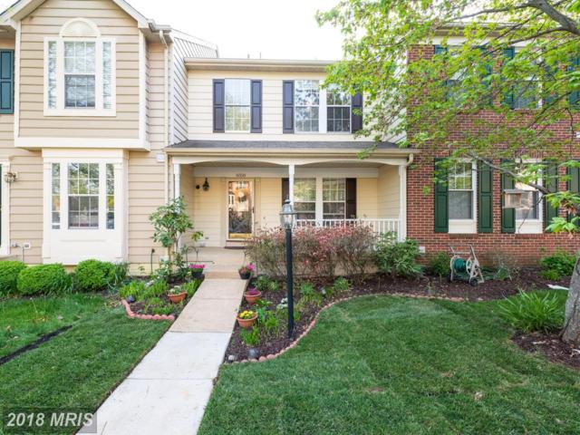 6558 Kelsey Point Circle, Alexandria, VA 22315 (#FX10229443) :: Browning Homes Group