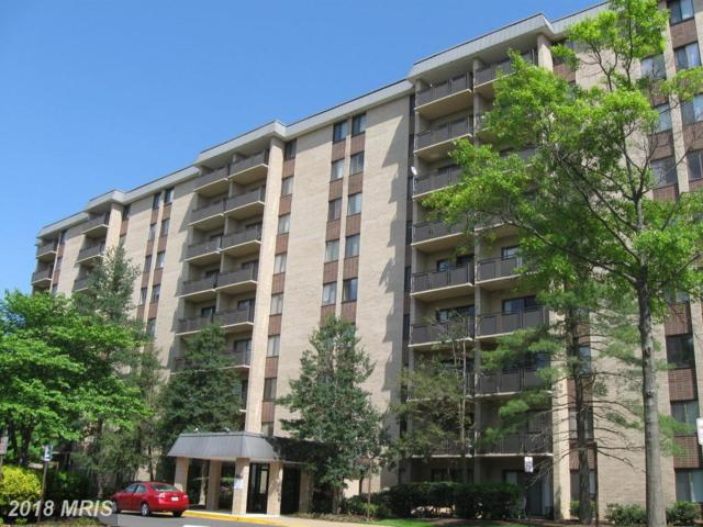 3101 Manchester Street S #211, Falls Church, VA 22044 (#FX10233785) :: SURE Sales Group