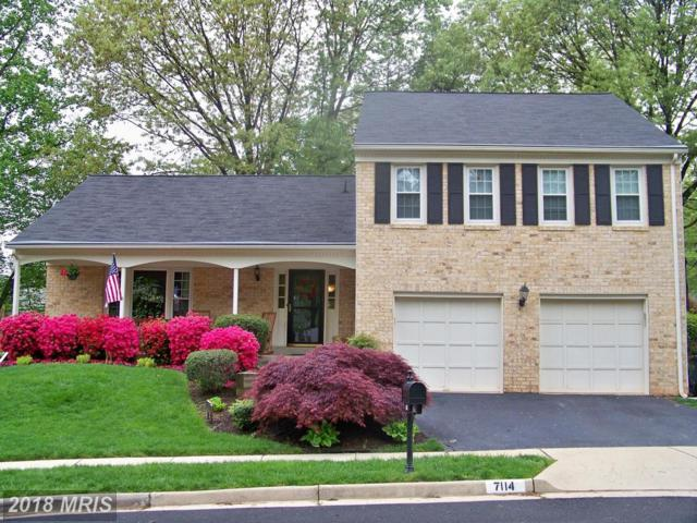 7114 Carnation Court, Springfield, VA 22152 (#FX10238594) :: Circadian Realty Group