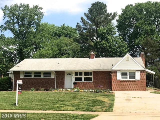 6710 New Hope Drive, Springfield, VA 22151 (#FX10238980) :: Bob Lucido Team of Keller Williams Integrity