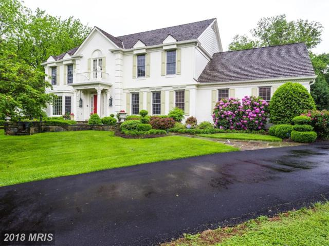 10709 Falls Pointe Drive, Great Falls, VA 22066 (#FX10244744) :: Berkshire Hathaway HomeServices