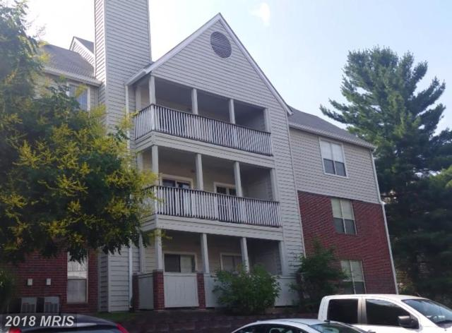 3921 Penderview Drive #1828, Fairfax, VA 22033 (#FX10247133) :: Pearson Smith Realty