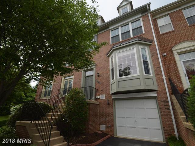 6224 Littlethorpe Lane, Alexandria, VA 22315 (#FX10248882) :: Arlington Realty, Inc.