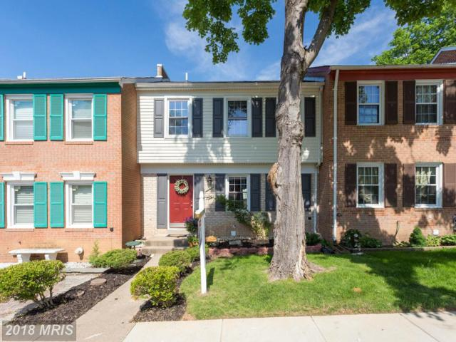 8448 Kitchener Drive, Springfield, VA 22153 (#FX10251972) :: RE/MAX Executives