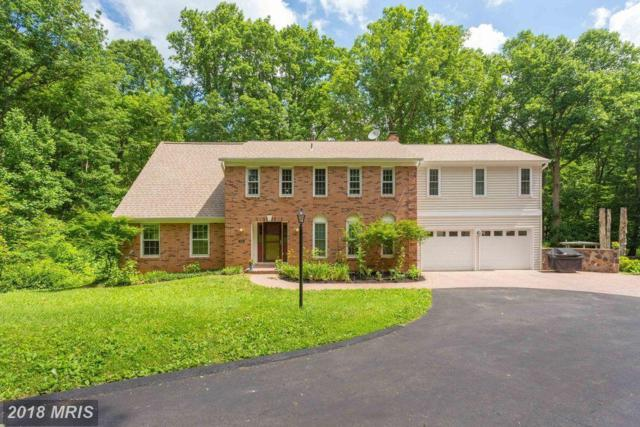 10228 Tamarack Drive, Vienna, VA 22182 (#FX10263217) :: The Belt Team