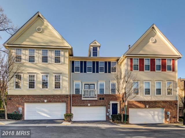8053 Nicosh Circle Lane #61, Falls Church, VA 22042 (#FX10263929) :: Circadian Realty Group
