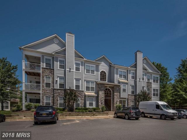 5963 Founders Hill Drive #202, Alexandria, VA 22310 (#FX10267994) :: Bob Lucido Team of Keller Williams Integrity