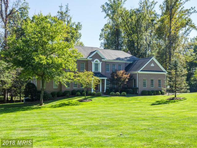 1495 Lily Loch Way, Great Falls, VA 22066 (#FX10271558) :: Browning Homes Group