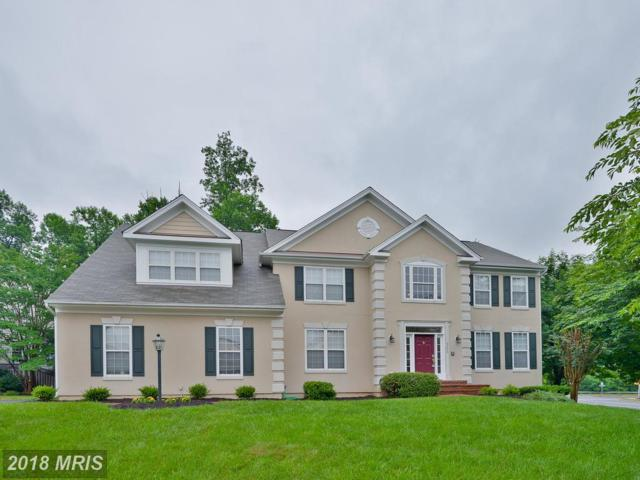 5225 Tulip Leaf Court, Centreville, VA 20120 (#FX10278253) :: RE/MAX Gateway