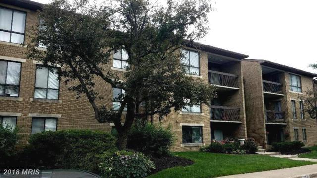 517 Florida Avenue E #203, Herndon, VA 20170 (#FX10282383) :: RE/MAX Executives
