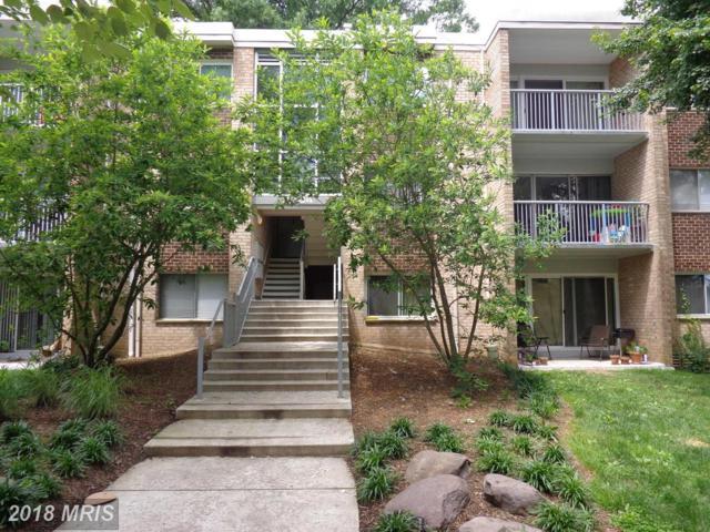 8004 Chanute Place #13, Falls Church, VA 22042 (#FX10282549) :: Keller Williams Pat Hiban Real Estate Group