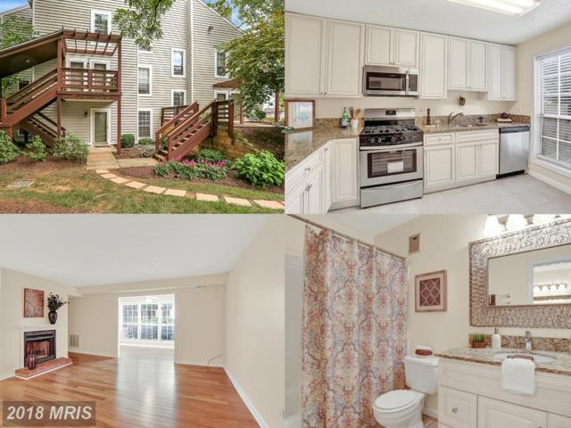 10063 Oakton Terrace Road #10063, Oakton, VA 22124 (#FX10285513) :: Green Tree Realty