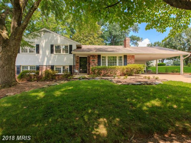 5312 Landgrave Lane, Springfield, VA 22151 (#FX10287495) :: Bob Lucido Team of Keller Williams Integrity
