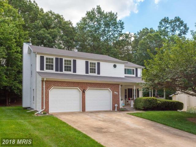 7389 Shady Palm Drive, Springfield, VA 22153 (#FX10293237) :: TVRG Homes