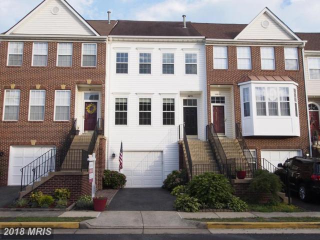 6633 Patent Parish Lane, Alexandria, VA 22315 (#FX10298398) :: Colgan Real Estate